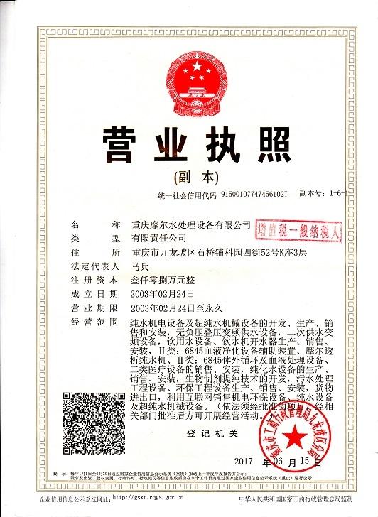 营业执照(安装)副本2017